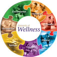 Image of circular puzzle pieces representing elements of wellness